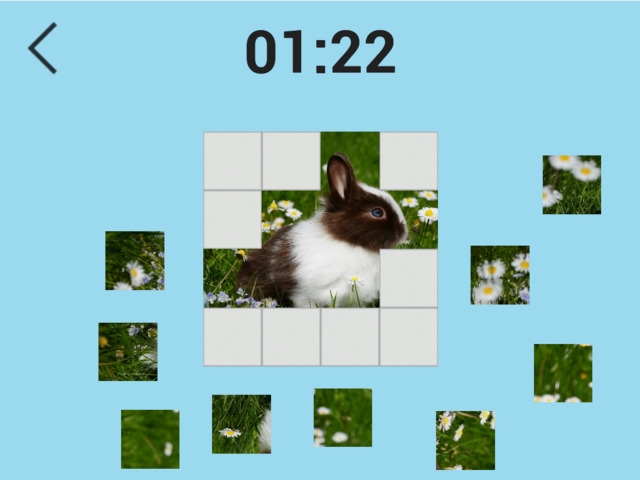 Ultimate Puzzles Animals